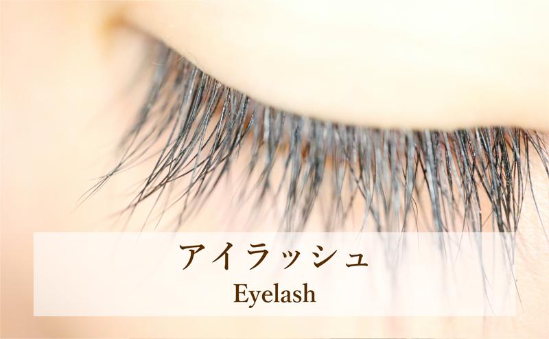 アイラッシュ Eyelash